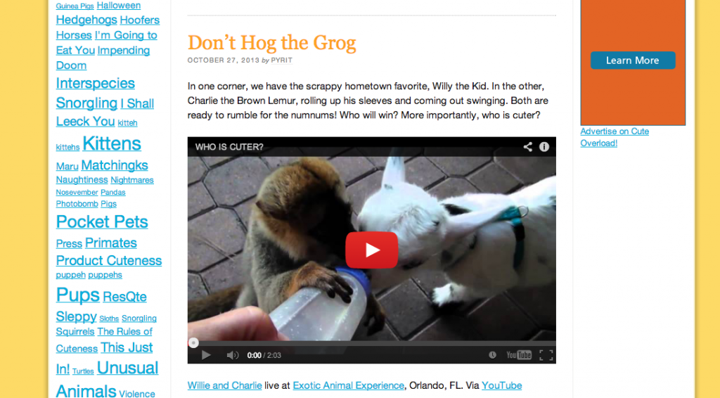 cuteoverload.com is constantly blogging videos of animals or just one picture with a paragraph. Easy and adorable.