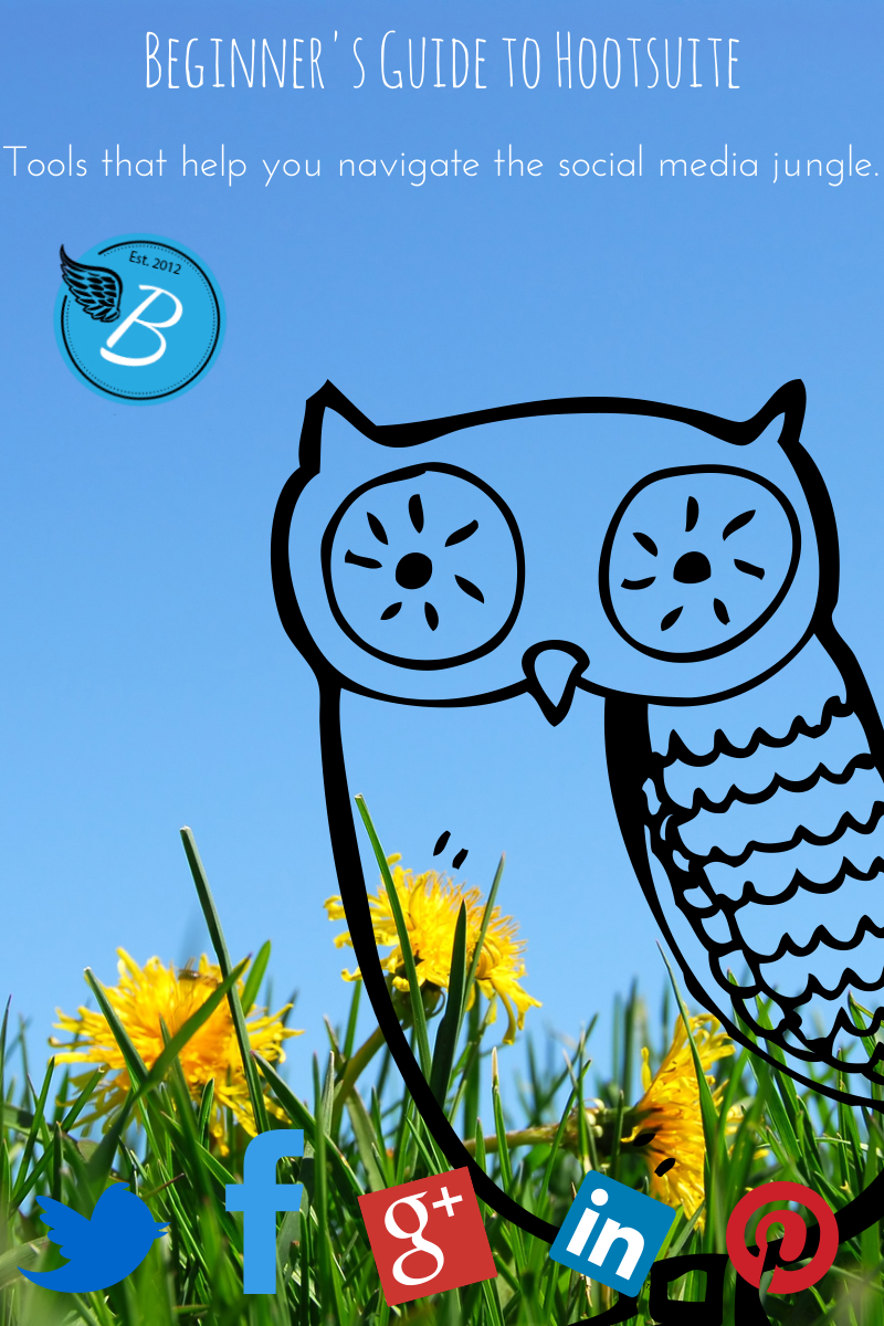 Beginner's Guide to Hootsuite